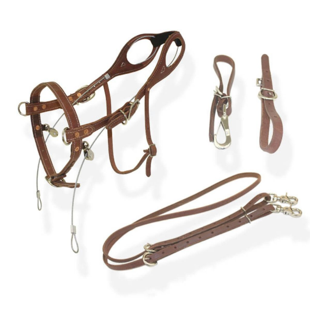 buckbuster_bridle_brown_2